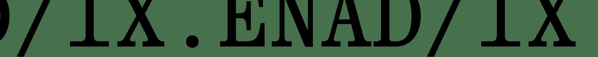 IX ENAD Logo